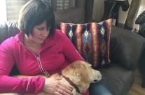 Dog Healing6