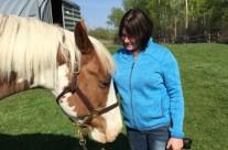 Horse Healing2
